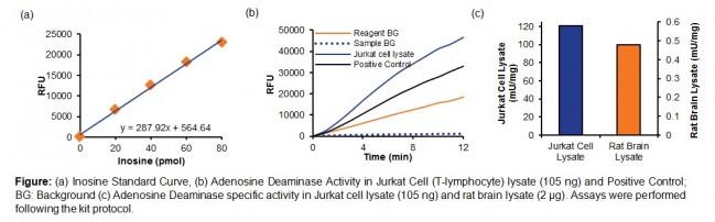 adenosine deaminase activity assay kit fluorometric k328