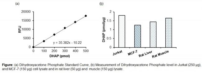 picoprobe dihydroxyacetone phosphate dhap fluorometric assay kit