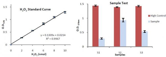 Catalase Activity ColorimetricFluorometric Assay Kit