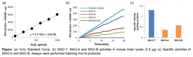 monoamine oxidase activity total mao mao a mao b fluorometric