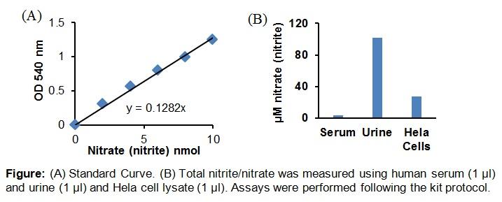 Nitric Oxide Colorimetric Assay Kit