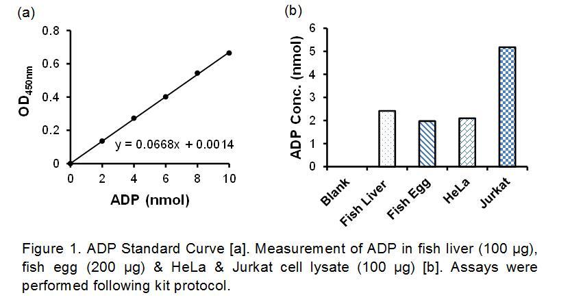 ADP Colorimetric Assay Kit II