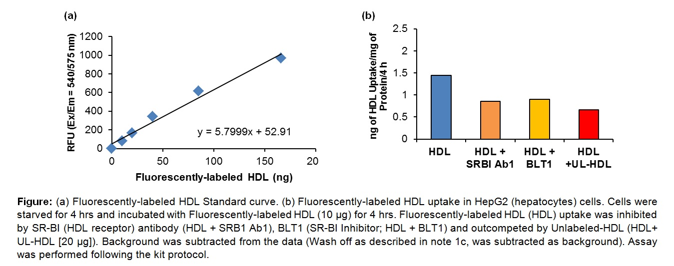 HDL Uptake Assay Kit (Fluorometric)