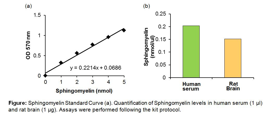 Sphingomyelin Quantification Colorimetric Assay Kit