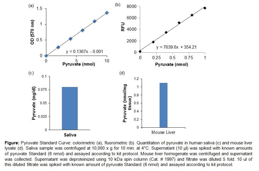 Pyruvate Colorimetric/Fluorometric Assay Kit