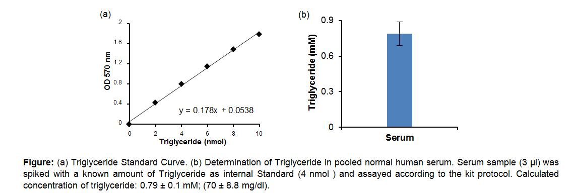 Triglyceride Quantification Colorimetric/Fluorometric Kit