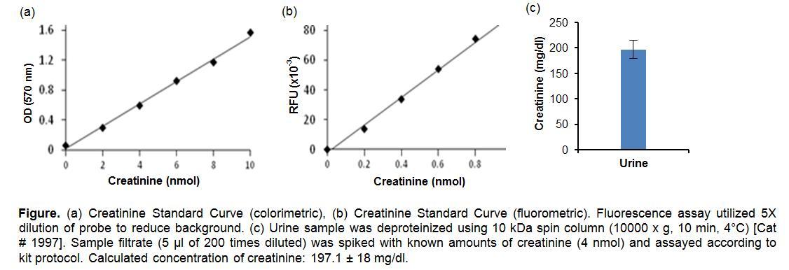 Creatinine Colorimetric/Fluorometric Assay Kit
