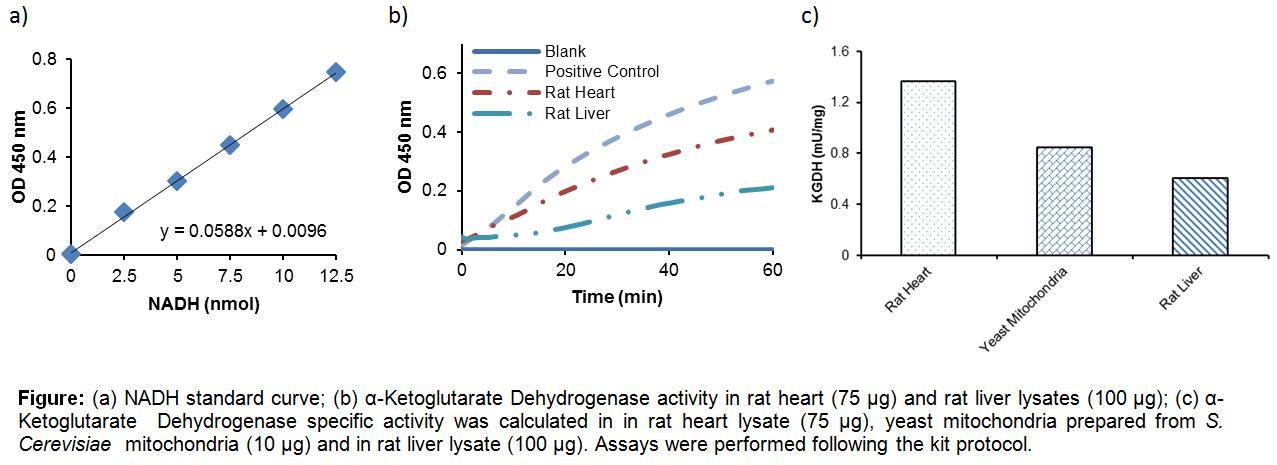 Alpha-Ketoglutarate Dehydrogenase Activity Colorimetric Assay Kit