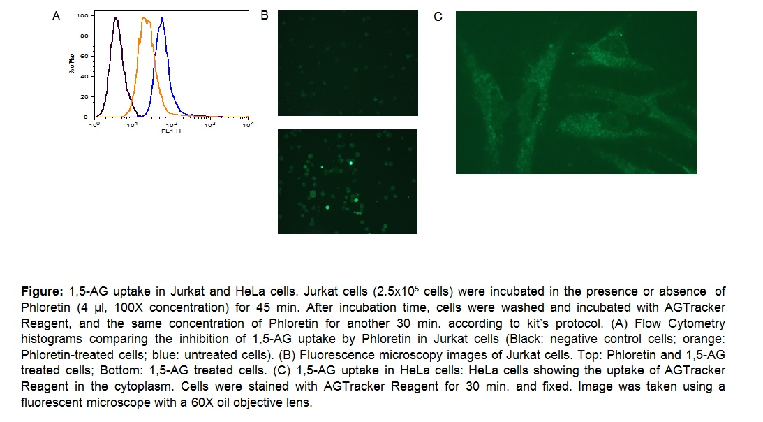 1,5-Anhydroglucitol Uptake Assay Kit (Cell-Based)