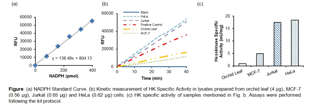 PicoProbe™ Hexokinase Activity Assay Kit (Fluorometric)