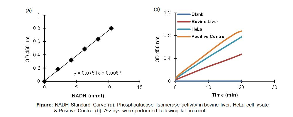 Phosphoglucose Isomerase Activity Colorimetric Assay Kit