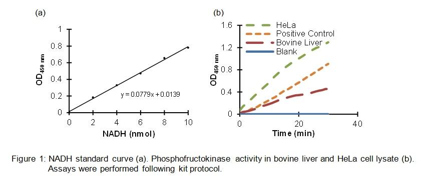 Phosphofructokinase (PFK) Activity Colorimetric Assay Kit